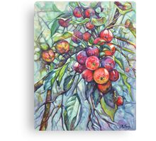 Forbidden Fruit Canvas Print