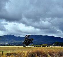 Storm Clouds Gathering by Terry Everson