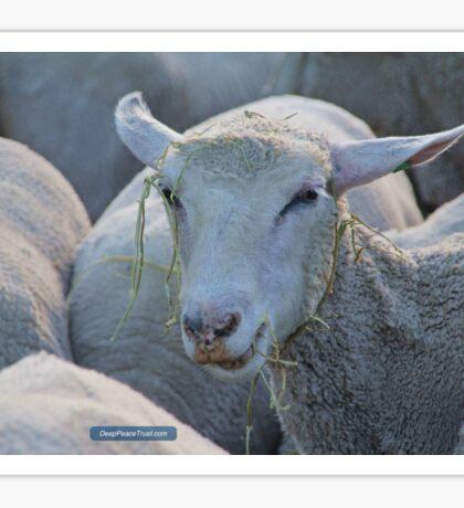 The Joy of Hay Sticker