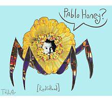 Pablo Honey? Photographic Print