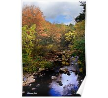 A Country Creek on an October Day Poster