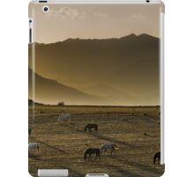 Heading home in the evening iPad Case/Skin