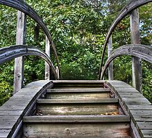 Cross The Wooden Way by Dan Dexter