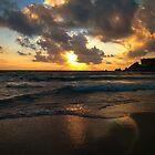 golden sunset by baxiaart