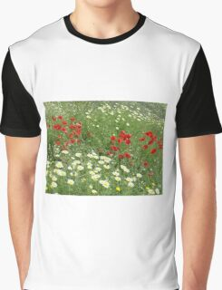 Springs beauty Graphic T-Shirt