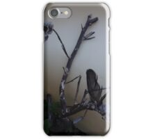 Two dead bird skulls in one dead tree iPhone Case/Skin
