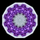 Purple & White Lace Mandala by Michael Matthews