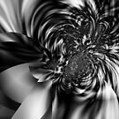 Motion in Black and White by Dana Roper
