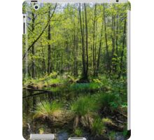 Trees in Briesetal, a flooded valley in Germany iPad Case/Skin