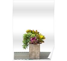 Pink Succulent and Metal Table Poster