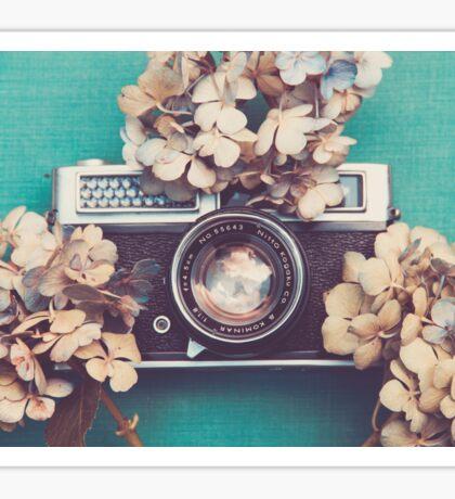 Camera & Hydrangea Sticker