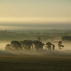 Autumn Morning - Borders Scotland by Francis Drake
