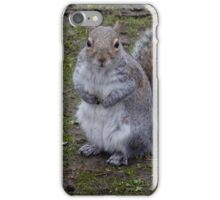 fluffy squirrel iPhone Case/Skin