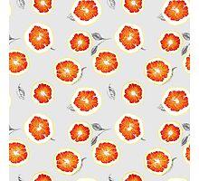 orange slices Photographic Print