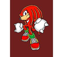 Knuckles Photographic Print