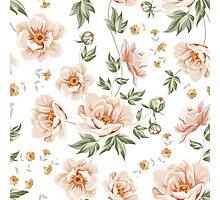 Peach Hazel Photographic Print