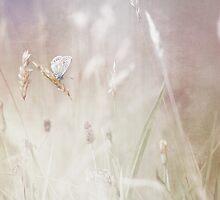 Dreaming.... by Bob Daalder