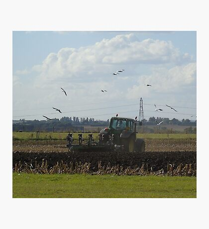 Following the plough Photographic Print