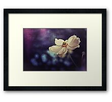 Oxford Anemone Framed Print