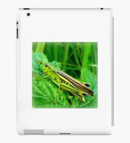 Grasshopper iPad Case/Skin