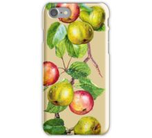 Apples and Pears iPhone Case/Skin