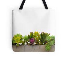 Mixed Succulents Tote Bag