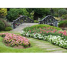 Floral Garden with Bridge and Path Photographic Print