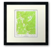 USGS TOPO Map Arkansas AR Willow 259880 1965 24000 Framed Print