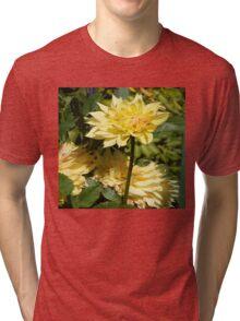 CREAMY LINEN DAHLIA DREAM Tri-blend T-Shirt