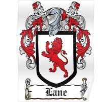 Lane Coat of Arms I (Roscommon, Ireland) Poster