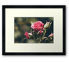 The Quiet that Things No One Knows About Framed Print