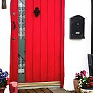 The Red Door by Shulie1