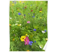 Wild flower art by David Tovey Poster