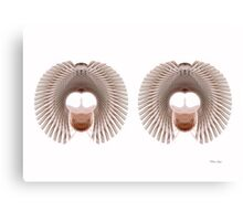 Optical Twins Canvas Print