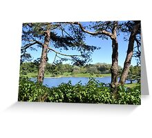 At the Edge of the Lagoon Greeting Card