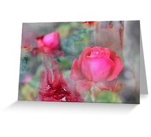 Blurry pink rose Greeting Card