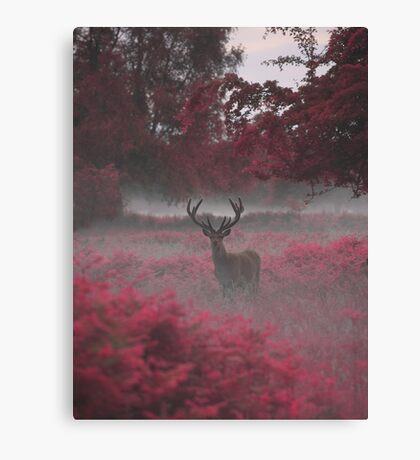 Another Stag, Another Planet 2 Canvas Print
