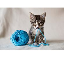 Rocket and the yarn Photographic Print