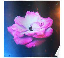 Vintage Pink Flower India Poster
