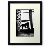 Double your luck Framed Print