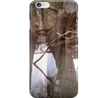 Magpie Springs - Montage 5 iPhone Case/Skin