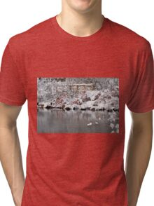 The pond, the snow, and the footbridge Tri-blend T-Shirt