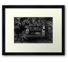 Chair in the Trees Framed Print