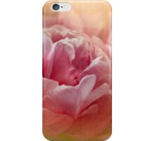 Find Joy in the Journey  iPhone Case/Skin