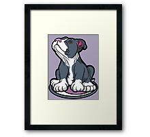Bull Terrier Puppy Teal Blue Framed Print