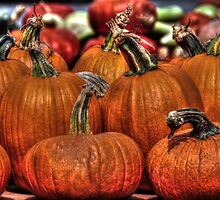 Pumpkins line up - who did it? by Poete100
