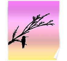 Hummingbird on branch in black silhouette with sunset Poster