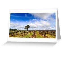 Springtime in the Barossa Valley Vineyards Greeting Card