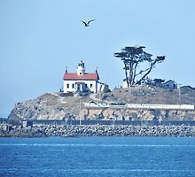 Battery Point Lighthouse by marilyn diaz