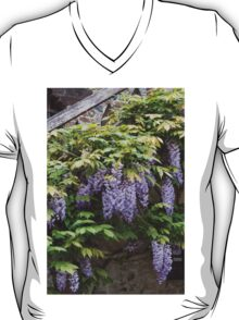 wisteria in spring T-Shirt